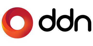 DDN logo