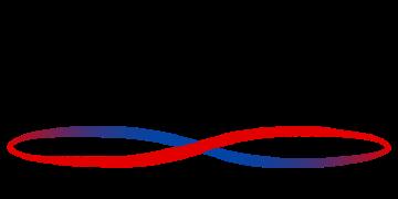 LogicVein Mini logo